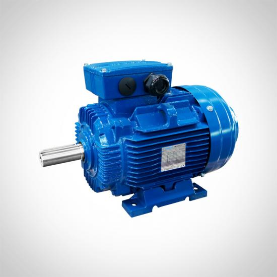 IE2 High Efficiency Electric AC Motor Low Voltage